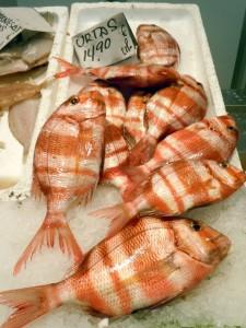 Urta - a local fish