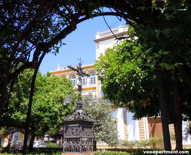 santa cruz 049