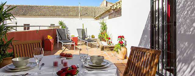 Seville rental apartment Alameda Terrace 1 | One-bedroom apartment with large private terrace 0089