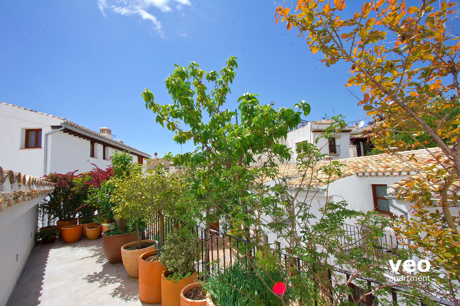 Granada apartment san jos alta street granada spain san for Terrace plants