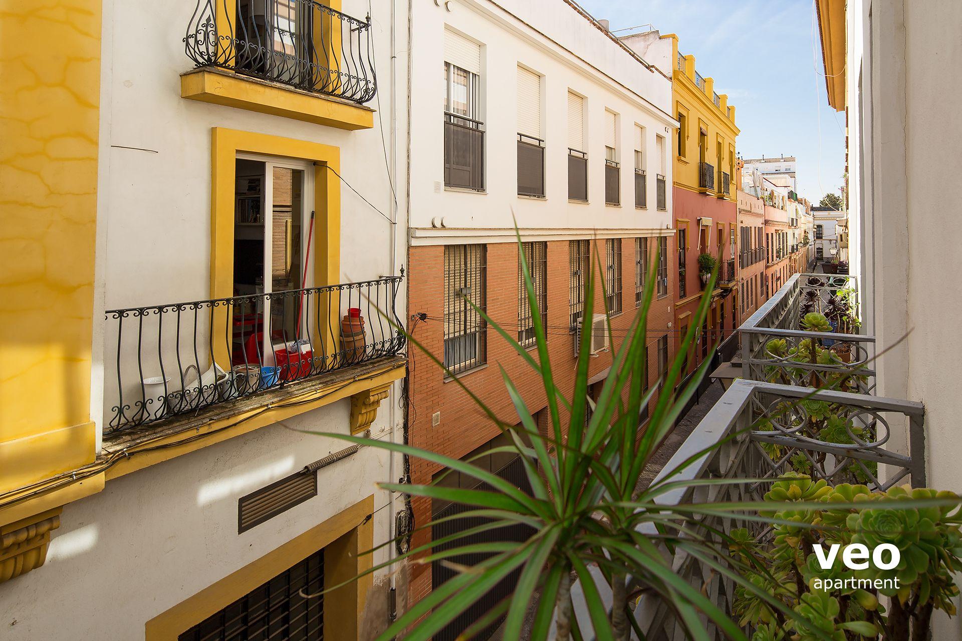 Seville Apartment Torres Street Seville Spain Torres