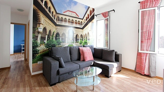 Rent vacation apartment in Seville Laraña Street Seville