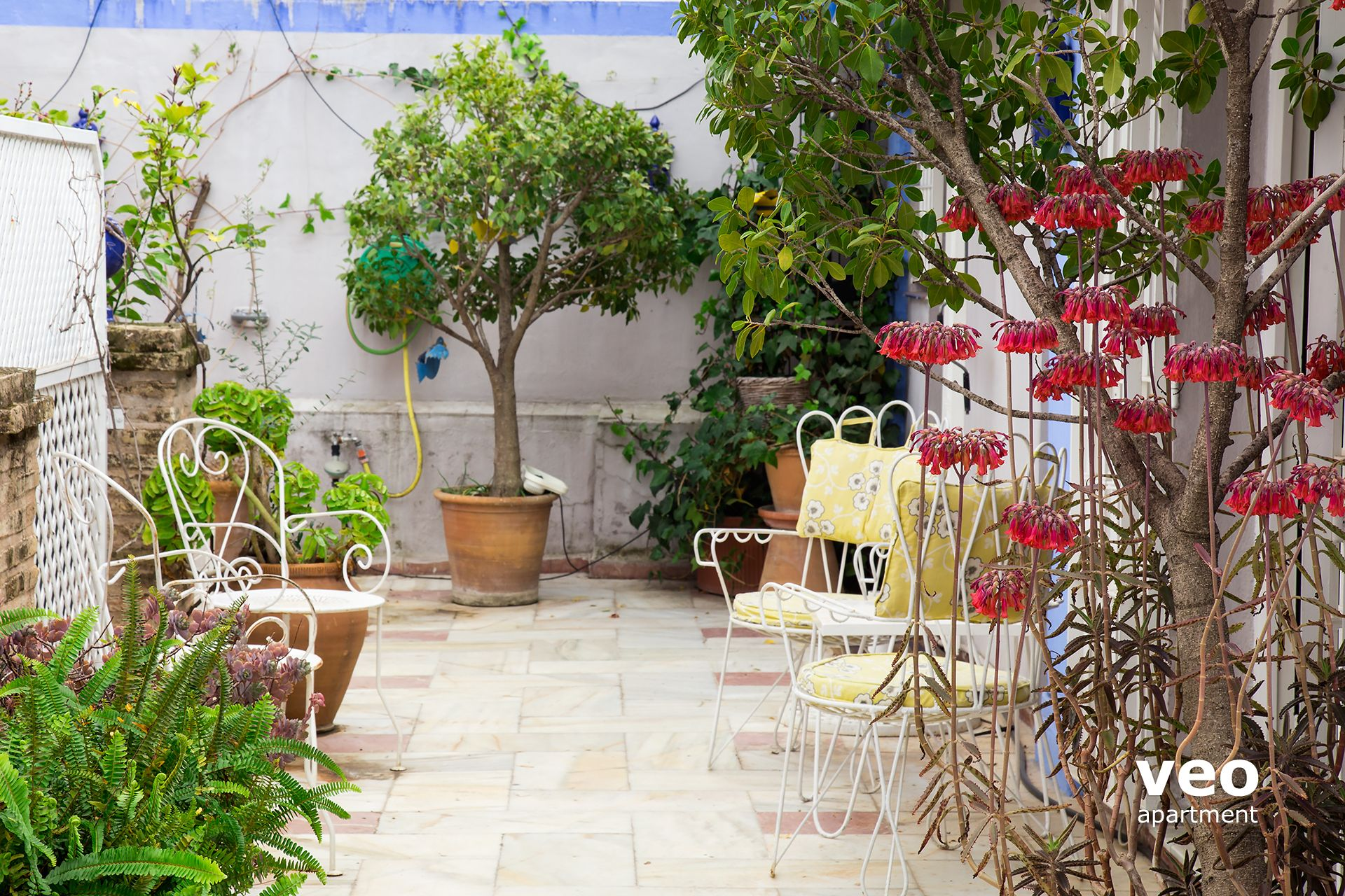 Seville spain apartments gallery image of this property for Terrace plants