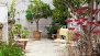 Seville Apartment - Terrace decorated with plants and garden furniture.